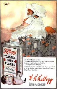 Kellogg's Toasted Corn Flakes -1919A